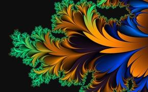 Обои цвет, узор, лист, перо, фон, линии