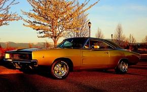 Картинка небо, деревья, Додж, Dodge, Charger, передок, 1968, Muscle car, Мускул кар, Чарджер, R/T
