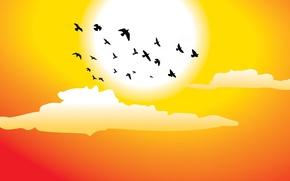 Картинка солнце, облака, птицы, векторная графика