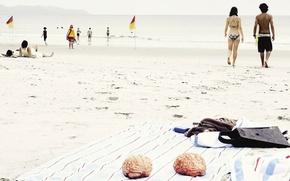 Обои Лето, Мозг, Пляж