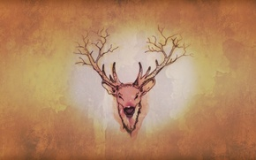 Картинка forest, horns, minimalism, nature, brown, old, cute, Deer, strange, true detective