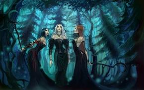 Обои Witches, Ведьмы, три, лес