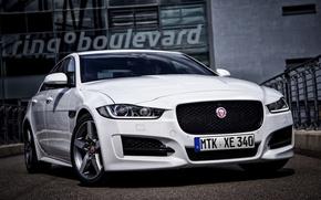 Картинка Jaguar, ягуар, Sport, 2015, XE R