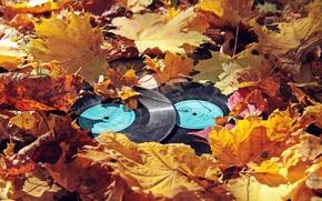 Картинка осень, листья, винил, пластинки