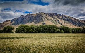 Картинка трава, облака, горы, поля, grass, mountains, clouds, fields
