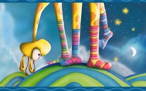 Картинка цвет, звезды, ноги, носки, жираф