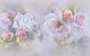 Картинка нежность, розы, пастель, бутоны