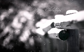 Картинка макро, снег, боке, Merry Christmas
