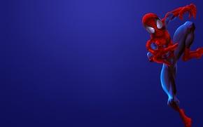 Обои красный, red, Человек-паук, комикс, marvel, comics, Spider-Man, синий