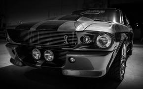 Картинка Mustang, Ford, Shelby, GT500, Форд, Eleanor, Muscle car, Silver, Автообои