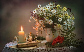 Картинка ноты, ромашки, свеча, букет, натюрморт, рябина