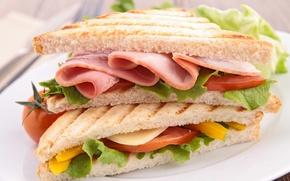 Обои фото, еда, хлеб, бутерброд, колбаса, фастфуд