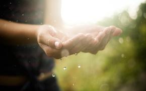 Картинка вода, капли, макро, свет, руки