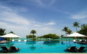 Картинка море, небо, тропики, пальмы, бассейн, курорт, Малайзия, шезлонги, Longkawi
