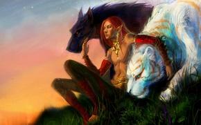 Картинка кошка, звезды, украшения, тигр, эльф, хищники, холм, арт, зверь, парень, дикие