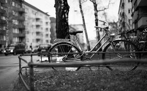 Картинка деревья, велосипед, город, улица, здания, автомобили, квартиры, городской