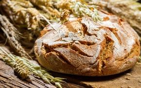 Картинка хлеб, колосья, пшено, выпечка