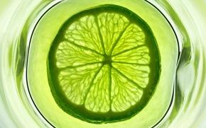 Картинка вода, стакан, зеленый, фрукт, лайм, цитрус
