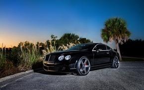 Картинка черный, купе, Bentley, Continental GT, black, front, бентли, континентал