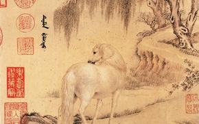Картинка письмо, лошадь, Wang Zhicheng