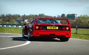 Картинка Красный, Авто, Дорога, Машина, Феррари, Поворот, Ferrari, F40, Суперкар, Supercar, Ferrari F40, F 40, Сзади, …