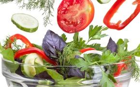 Обои Greens, basil, parsley, базилик, lettuce, paprika, перец болгарский, dill, салат, паприка, зелень, помидор, pepper, укроп, ...