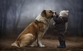 Картинка собака, дружба, ребёнок