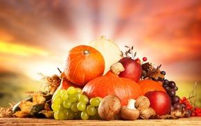 Картинка грибы, сухие листья, овощи, яблоко, орехи, тыква, фрукты, виноград