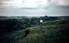 Картинка поле, трава, девушка, деревья