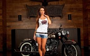 Обои девушка, брюнетка, мотоцикл, harley-davidson