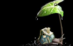Обои листок, домик, дождик, улитка, капли