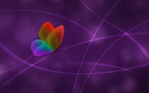 Обои цвет, Бабочка, сиреневый, линии