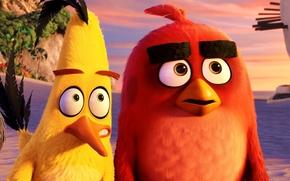 Картинка cinema, animation, red, Red, game, black, beach, sea, yellow, eyes, smile, flowers, birds, cartoon, movie, …