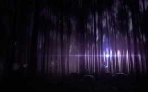 Картинка чаща, плащ, арт, капюшон, деревья, волки, человек, ночь, лес