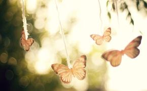 Картинка небо, макро, свет, деревья, бабочки, блики, фон, настроение, ветер, воздух