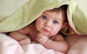 Обои голубые глаза, взгляд, ребенок, малыш