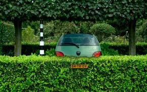 Картинка машина, Форд, парковка