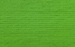 Обои фон, стена, цвет