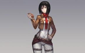 Картинка взгляд, девушка, хлеб, жест, art, shingeki no kyojin, mikasa ackerman, ryuuzaki itsu
