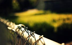 Картинка макро, природа, сетка, забор, ограда, размытость