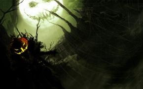 Обои тыква, хэллоуин, halloween
