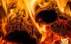 Картинка огонь, пламя, жар, дрова