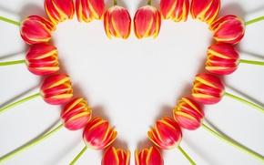 Картинка сердце, весна, тюльпаны, 8 марта, heart, beautiful, tulips, color, spring