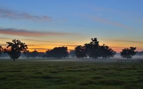 Картинка поле, пейзаж, закат