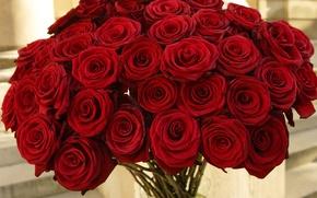 Картинка цветы, розы, букет, красные