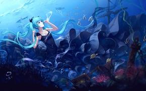 Картинка девушка, рыбки, пузыри, аниме, арт, сундук, vocaloid, hatsune miku, под водой, sombernight