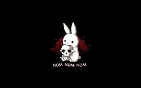Картинка череп, заяц, nom nom nom