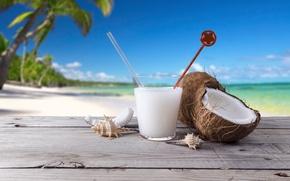 Картинка море, пляж, пальмы, кокос, коктейль, ракушки