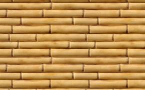 Обои бамбук, макро, фотографии, текстуры