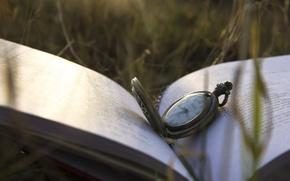 Картинка трава, часы, книга, крышка, циферблат